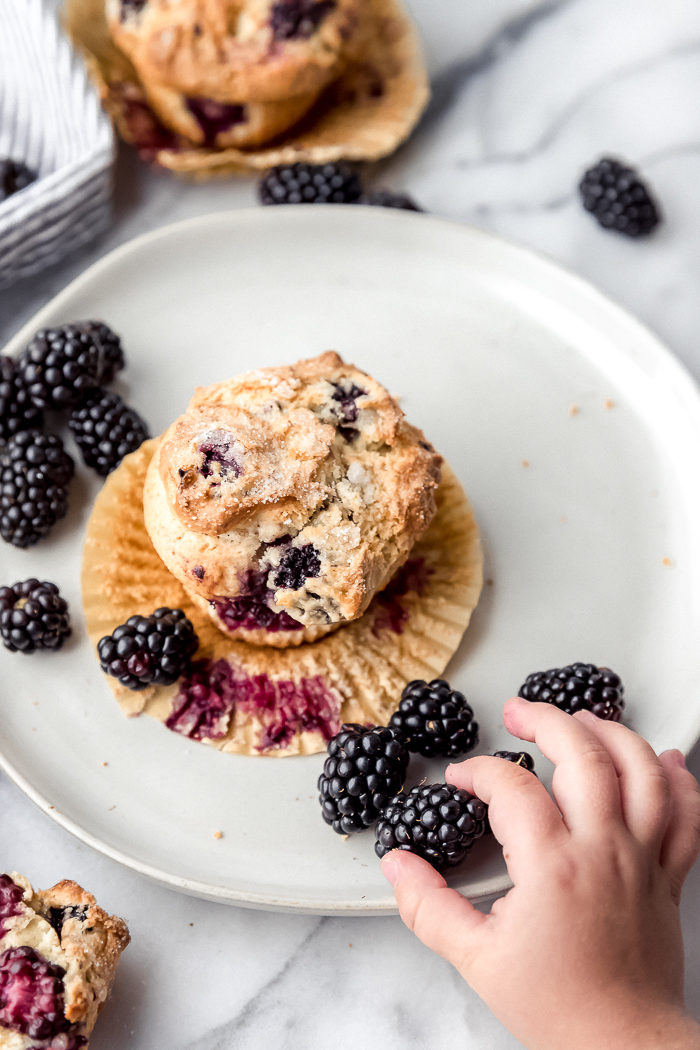 Three blackberry muffins on a white background, one blackberry muffin sitting on a white plate with fresh blackberries around it and a little girl is grabbing one of the blackberries off the plate, by The Food Cafe